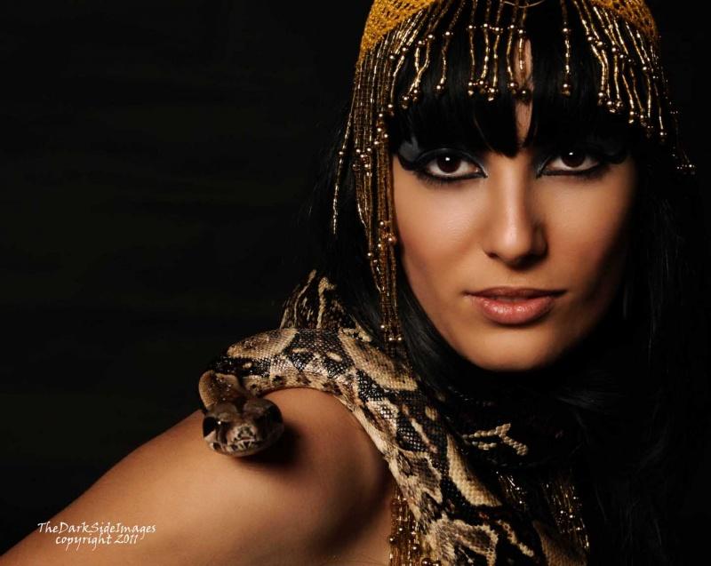 Mar 23, 2011 Princess and the Python
