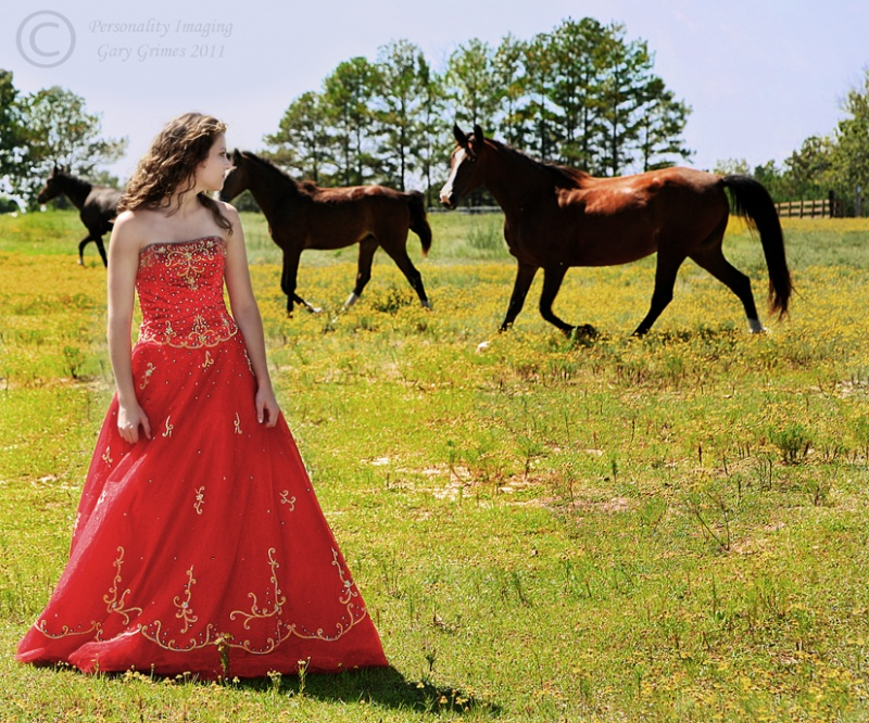 Near Maplesville, Alabama Mar 29, 2011 Grimes Enterprises LLC 2006 Country Style with Santanna (model not on MM)