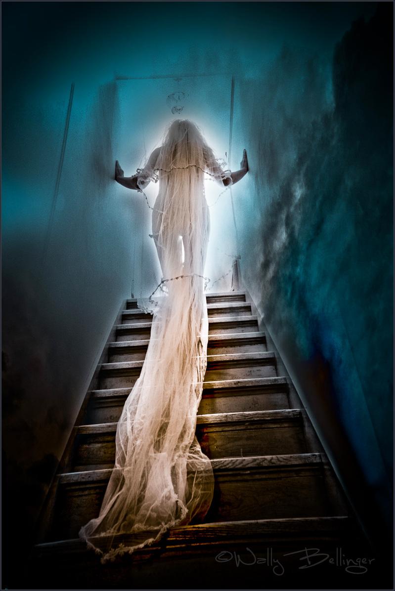 Stairway to Heaven Apr 05, 2011 Bellinger Winner 1st Place POTD Original: 06-17-11  Wedding Ascension