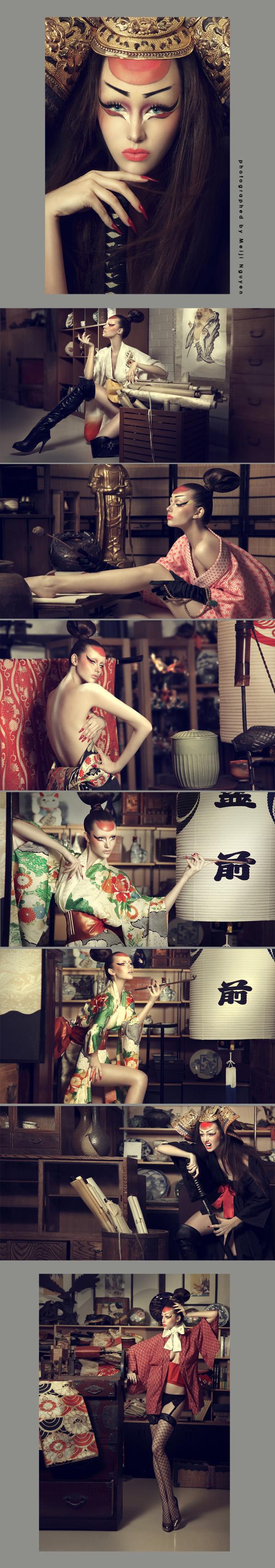 Apr 25, 2011 Meiji Nguyen - www.meijinguyen.com