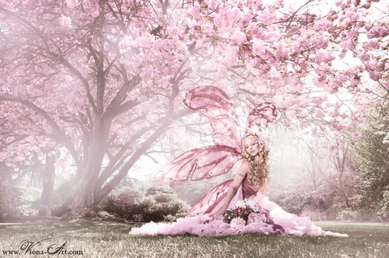 "Aug 05, 2011 Photography: www.viona-art.com Model&styling: Jolien Rosanne Post production: Chester Van Bommel ""Cherry Blossom Fairy"""