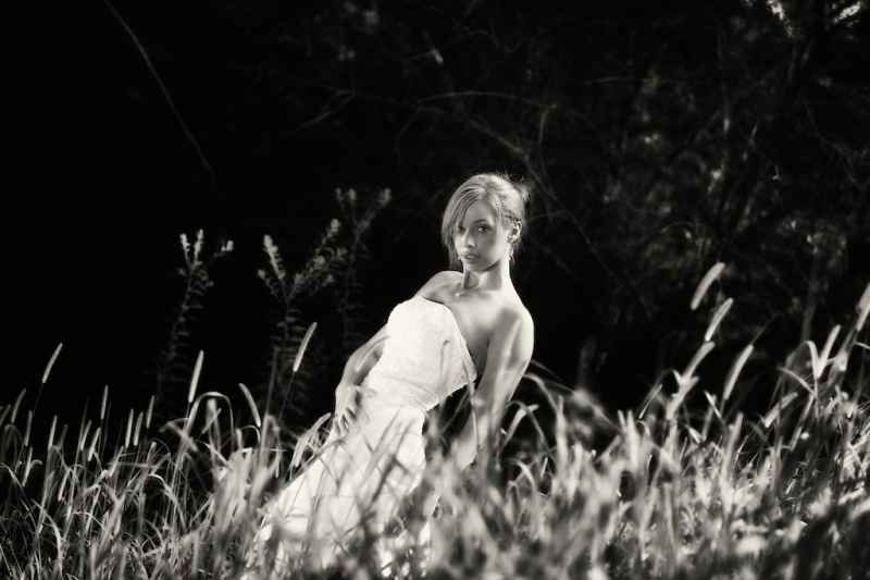 The Woods Aug 07, 2011 Jon Cook Photography Leaning