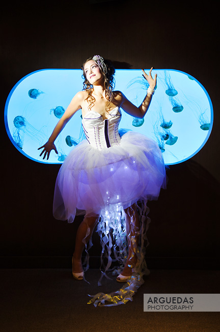 new england aquarium Sep 19, 2011 Johnny Arguedas Princess Jellysious