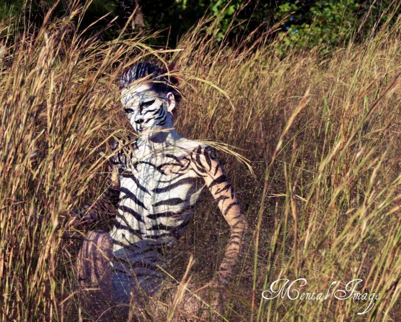 Oct 07, 2011 White Tiger