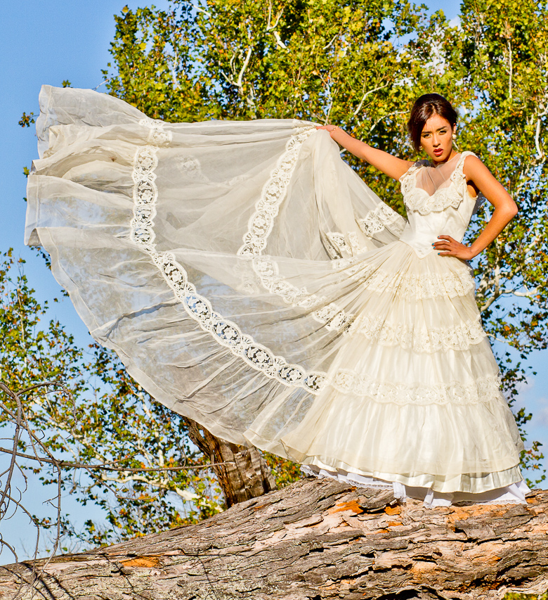 Grand Rapids, MI Nov 07, 2011 J Rosa Photography Lifes a Breeze!