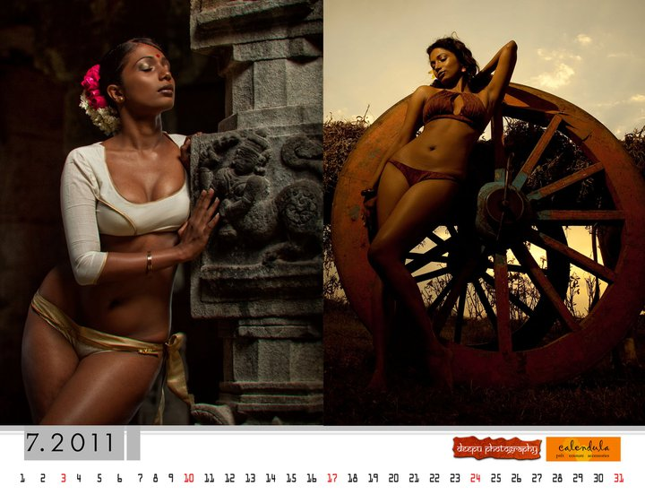 India Nov 15, 2011 Deepu Nair Calendar 2011