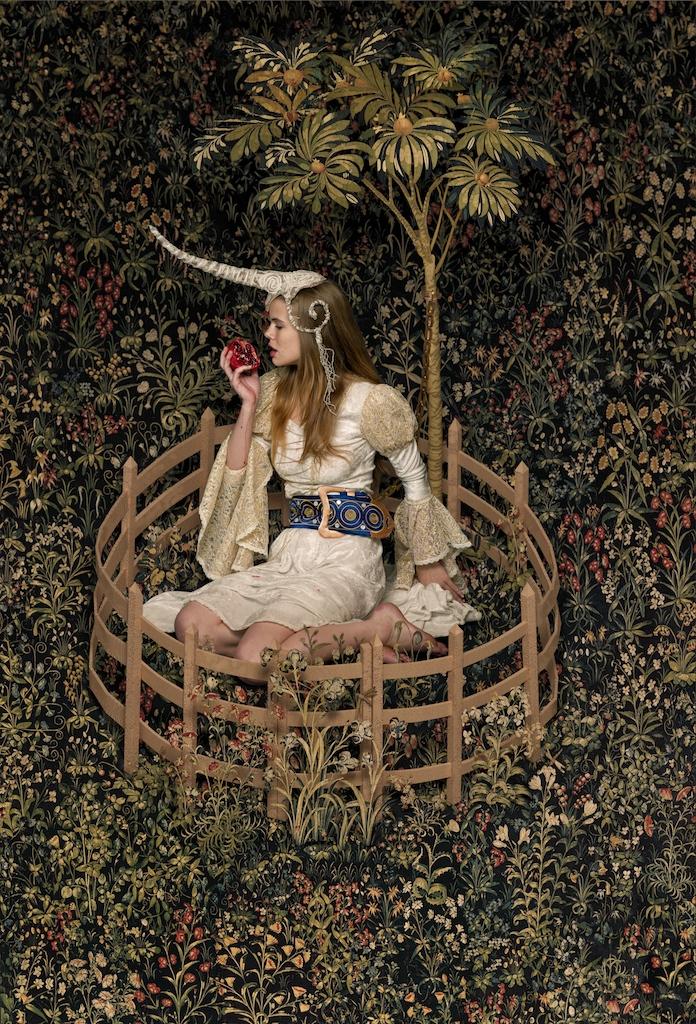 Jan 11, 2012 Making of: http://www.digitalartform.com/archives/2012/01/unicorn_in_capt.html