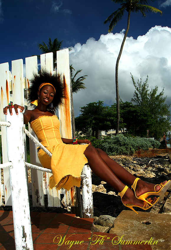 Barbados Jan 19, 2012 Wayne FLI Summerlin12 Cherry Ann