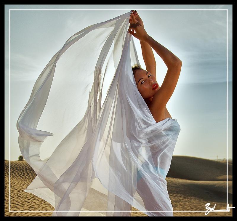Dubai Feb 21, 2012 I. Bernhardt Desert Angel