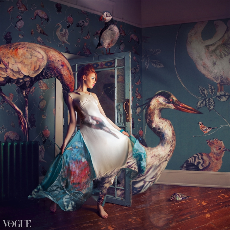 The Roost Feb 23, 2012 Miss Aniela Migration Season