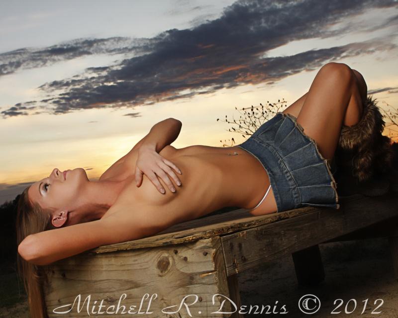 Feb 28, 2012 Mitchell Dennis