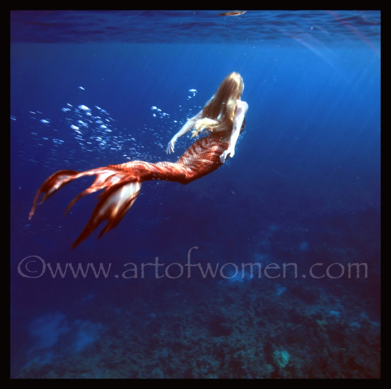 big island of hawaii May 09, 2012 www.artofwomen.com Under water beauty