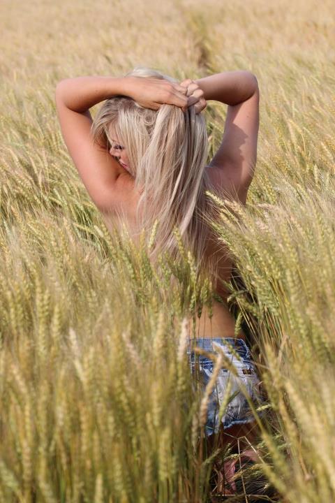 in a wheatfield in kansas Jun 16, 2012