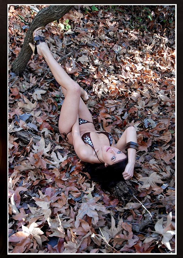 san diego Sep 18, 2012 leaves