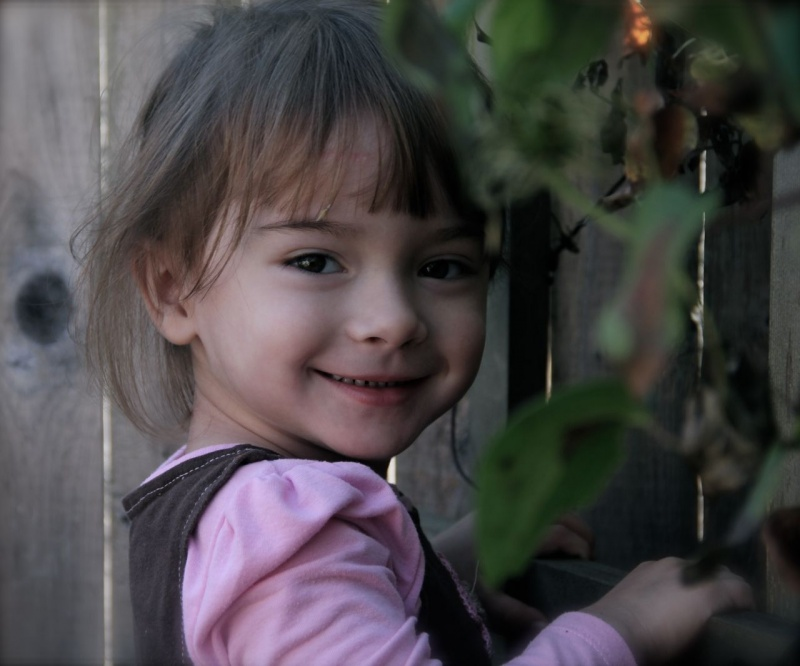 Boston, MA Nov 01, 2012 Kevin MacDonald Photography Little Girl Climbing