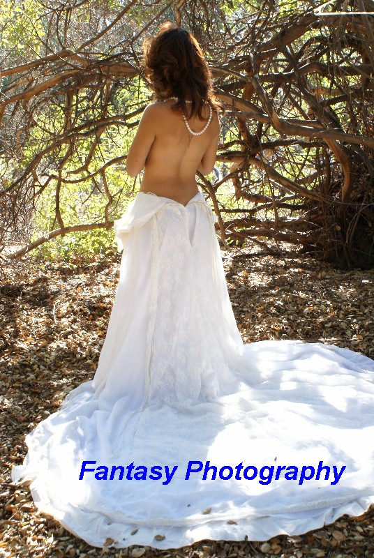 chatsworth Nov 17, 2012 Steve@Fantasy Photography Linda Woodland Wedding