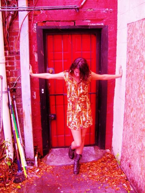 Nov 24, 2012 dress