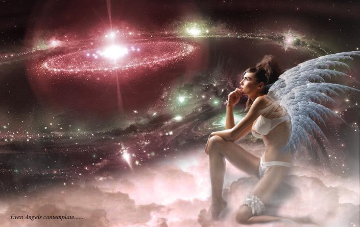 Perth Western Australia Nov 25, 2012 neil c starling EVEN ANGELS CONTEMPLATE..