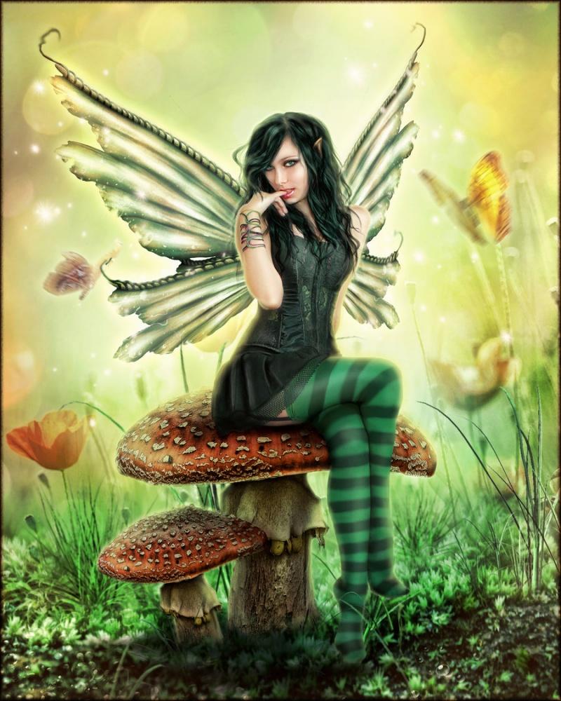 Nov 29, 2012 Mushroom Fairy