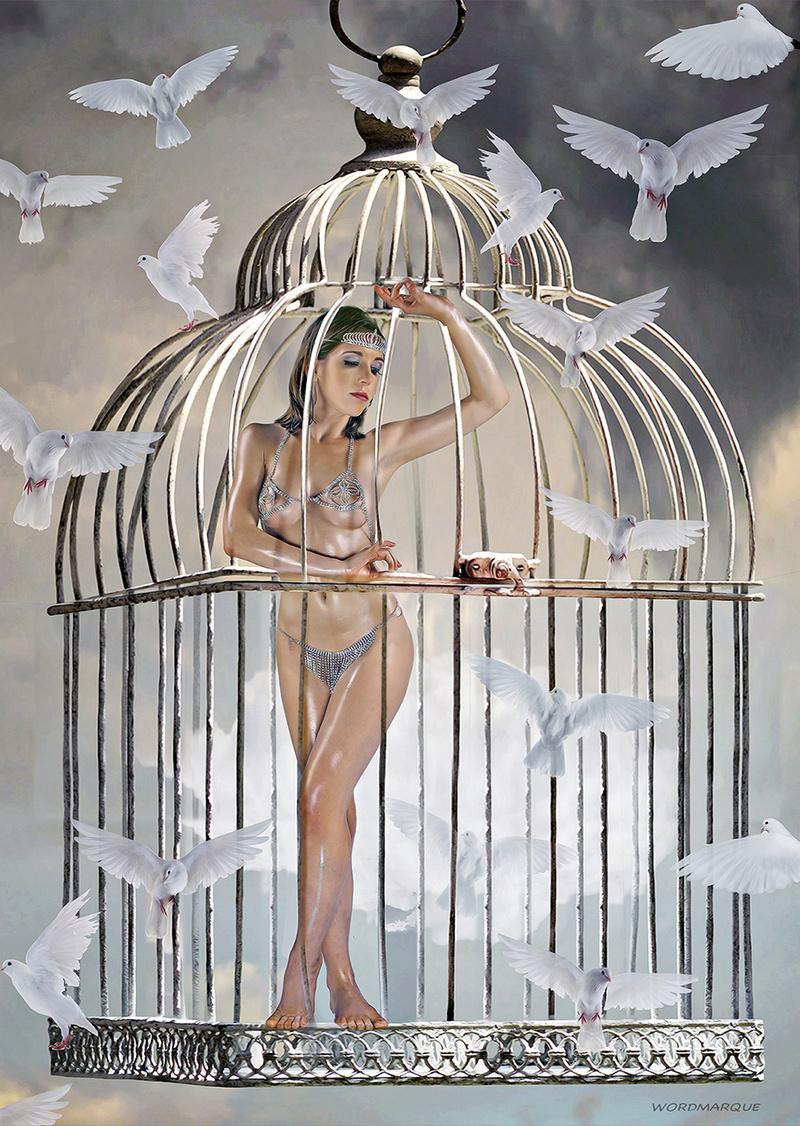 Nov 04, 2015 Wordmarque Bird in Cage